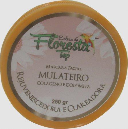 MÁSCARA FACIAL DE MULATEIRO COLÁGEN...